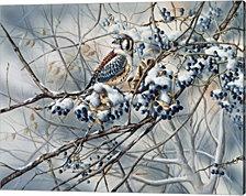 Winter Perch by Wanda Mumm Canvas Art