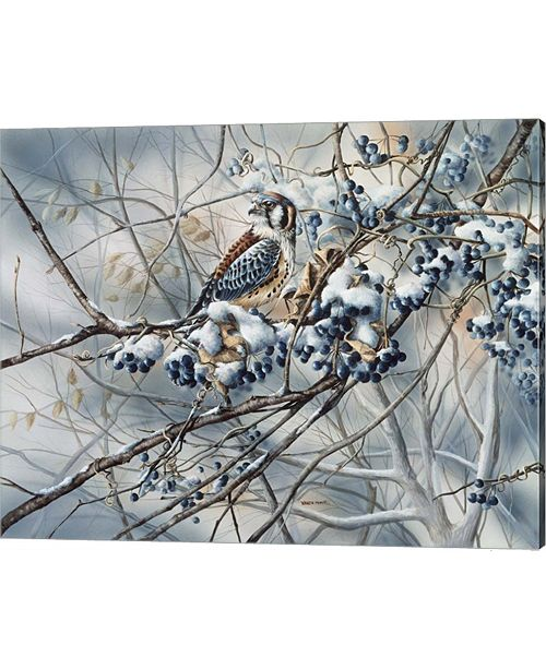 Metaverse Winter Perch By Wanda Mumm Canvas Art