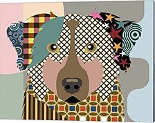 Australian Shepherd Dog by Lanre Adefioye Canvas Art