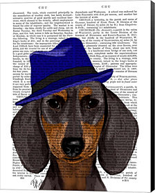Dachshund With Blue Trilby by Fab Funky Canvas Art