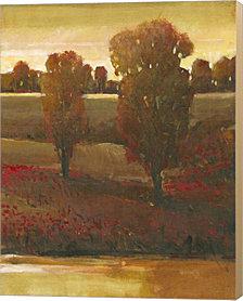 Illuminating Sky II by Timothy O'Toole Canvas Art
