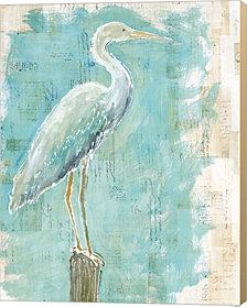 Coastal Egret I by Sue Schlabach Canvas Art