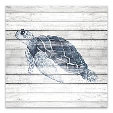 Blue Turtle On Wood Printed Canvas
