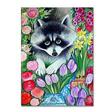 Oxana Ziaka 'Raccoon' Canvas Art Collection