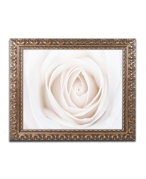 """Trademark Global Cora Niele 'White Rose' Ornate Framed Art, 11"""" x 14"""""""