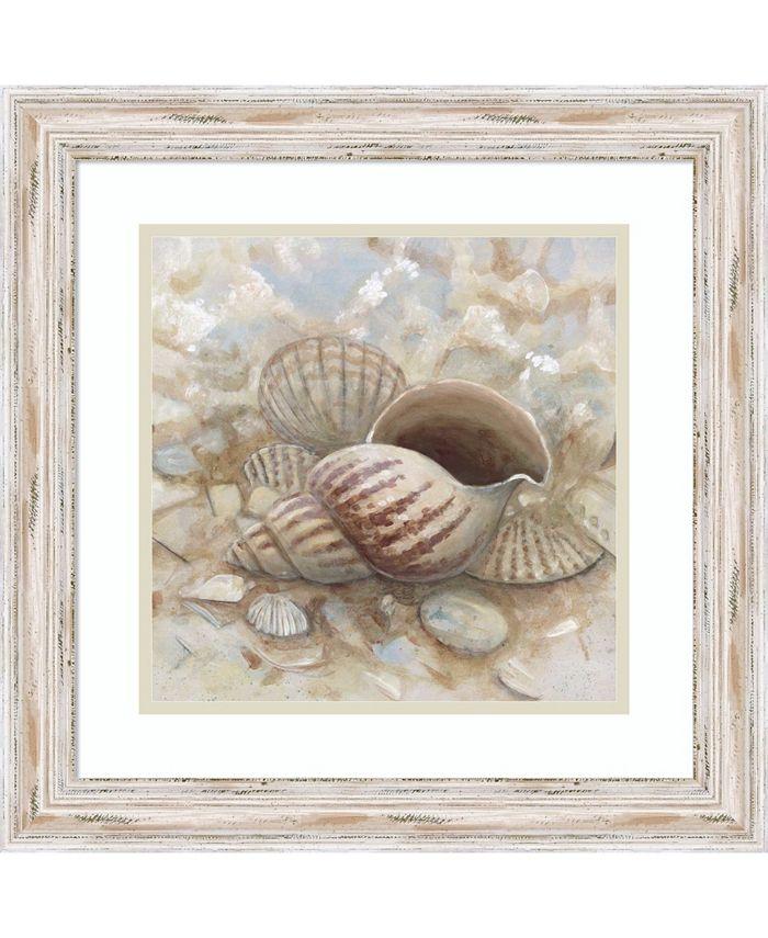 Amanti Art - Beach Prize I- Triton Seashell 19x19 Framed Art Print