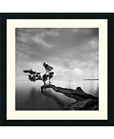 Water Tree Framed Art Print