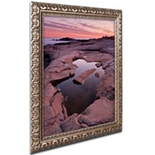 "Michael Blanchette Photography 'Tide Pool Geometry' Ornate Framed Art, 11"" x 14"""