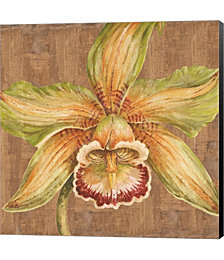 Aloha Beauty I by Judy Shelby Canvas Art