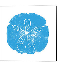 Blue Sand Dollar by Veruca Salt Canvas Art