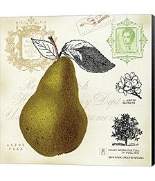 Pear Notes by Studio Mousseau Canvas Art