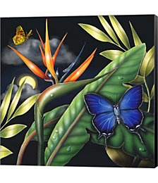 Metalmark by Rosiland Solomon Canvas Art