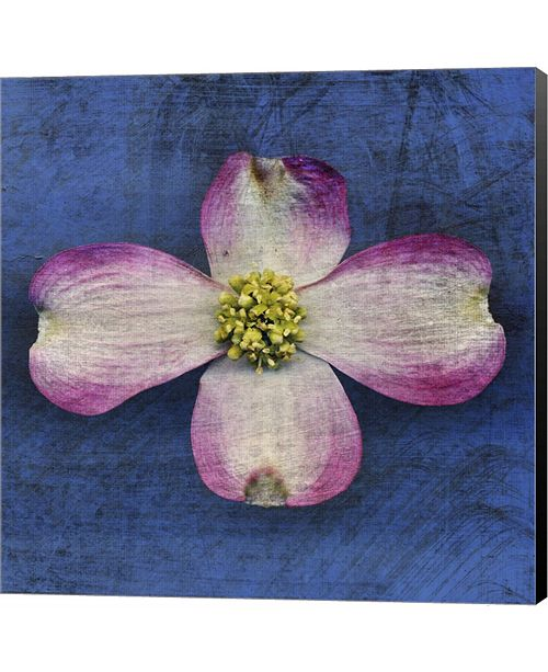 Metaverse Pink Dogwood by John W. Golden Canvas Art