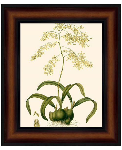 Metaverse Orchid Array III by Kent l Drake Framed Art