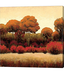 Autumn Forest II by James Wiens Canvas Art