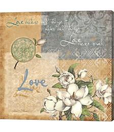 Love by Janet Stever Canvas Art