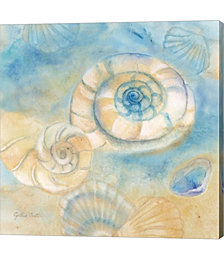 Watercolor Shells I by Cynthia Coulter Canvas Art
