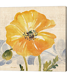 Watercolor Poppies VI by Pamela Gladding Canvas Art