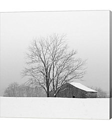 Townsend Winter I by Nicholas Bell Photography Canvas Art