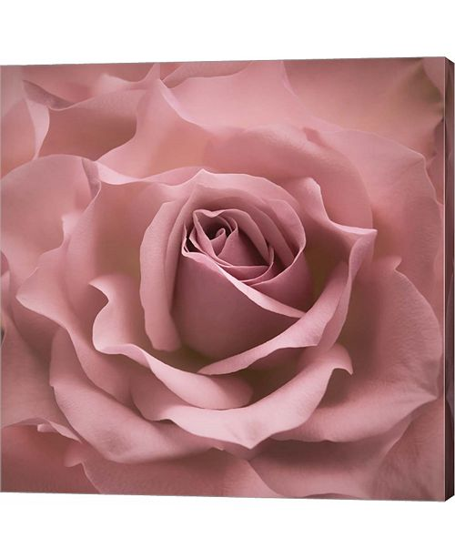 Metaverse Misty Rose Pink Rose by Cora Niele Canvas Art