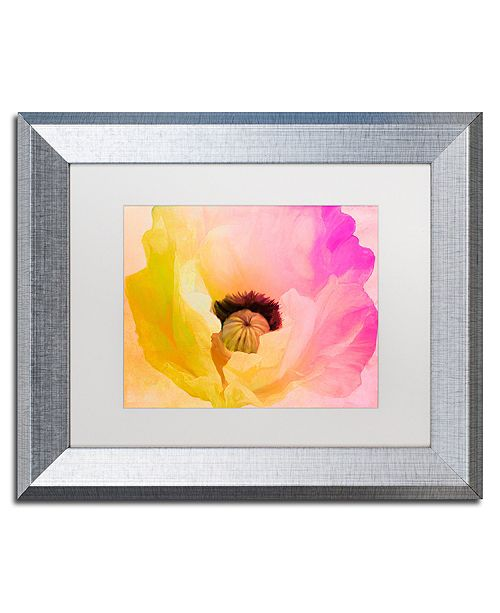 "Trademark Global Color Bakery 'Poppy Gradient Ii' Matted Framed Art, 11"" x 14"""