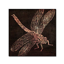 Color Bakery 'Dragonfly' Canvas Art