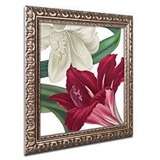 Color Bakery 'Christmas Amaryllis Ii' Ornate Framed Art