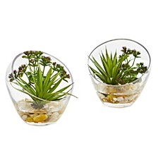 Spiky Succulent Artificial Plant in Slanted Glass, Set of 2