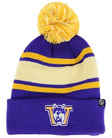 Zephyr Washington Huskies Tradition Knit Hat