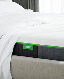 "Carihola 10"" Charcoal Memory Foam, Mattress in a Box - Split King"