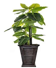 "90.8"" Tall Indoor-Outdoor Elephant Ear Plant Artificial Indoor/ Outdoor Decorative Faux in Fiberstone Planter"