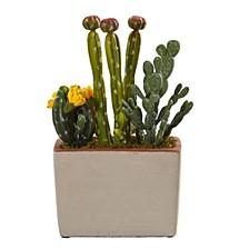 Mixed Cactus Artificial Plant w/ Decorative Planter