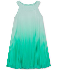 Rare Editions Toddler Girls Ombré Pleated Chiffon Dress