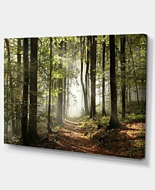 "Designart Green Fall Forest With Sun Rays Photography Canvas Print - 32"" X 16"""
