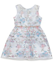 f2a4742880 Rare Editions Baby Girls Floral Embroidered Dress