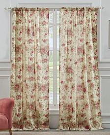 Antique Window Panel Pair