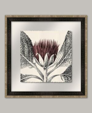 Arctium I in Rose Framed Giclee Wall Art - 22