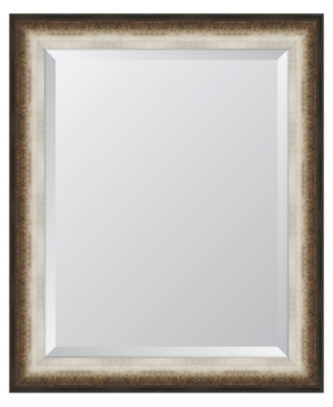 Black and Soft Silver Radiant Swan Framed Mirror - 28.5