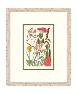 Cottage Flowers Ii Framed Giclee Wall Art - 21