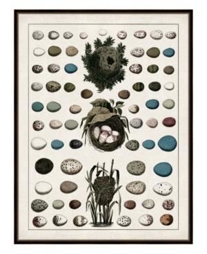 Aerie Ii Framed Giclee Wall Art - 36