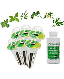Traditional Medicinal Herbs 6-Pod Seed Kit
