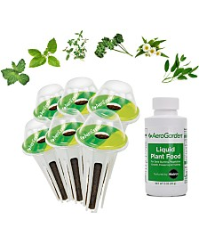 AeroGarden Traditional Medicinal Herbs 6-Pod Seed Kit