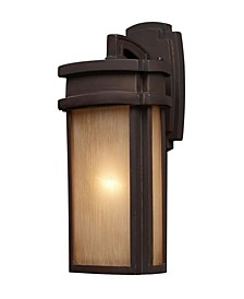 Sedona 1-Light Outdoor Sconce in Clay Bronze
