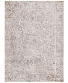 Safavieh Winston Gray and Cream 8' x 10' Area Rug