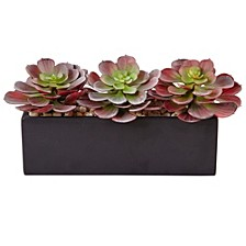 "6"" Mini Echeveria Artificial Succulent in Rectangular Planter"