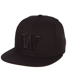 Washington Huskies M15 Black on Black Fitted Cap