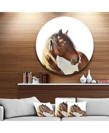 "Designart 'Large Brown Horse Illustration' Ultra Glossy Animal Oversized Metal Circle Wall Art - 23"" x 23"""