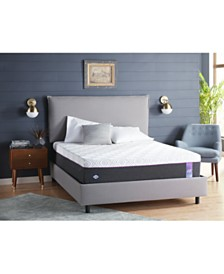 "Sealy to Go 12"" Cushion Firm Hybrid Mattress, Quick Ship, Mattress in a Box- Queen"