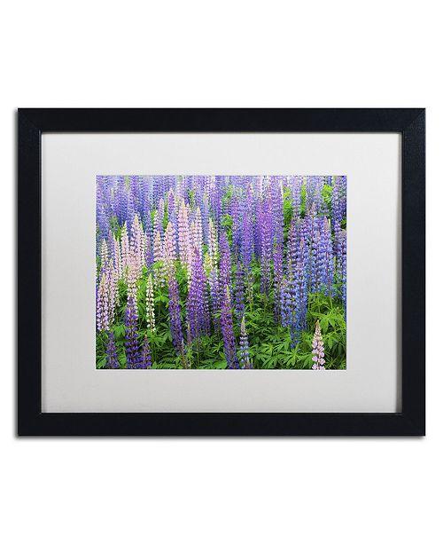 "Trademark Global Cora Niele 'Blue Pink Lupine Flower Field' Matted Framed Art - 16"" x 20"" x 0.5"""