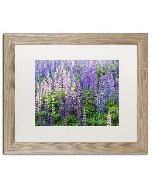 "Trademark Global Cora Niele 'Blue Pink Lupine Flower Field' Matted Framed Art - 20"" x 16"" x 0.5"""